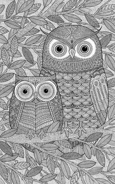Line Art Owls By James Newman Gray