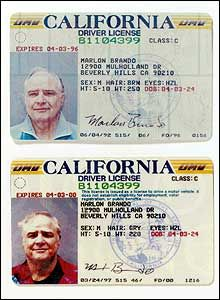 Driver License Online, Godfather Movie, Princess Diana Wedding, Streetcar Named Desire, Guys And Dolls, Face Photography, Birth Certificate, Marlon Brando, Iconic Movies