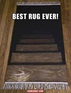 Optical illusion rug. I need one of these!