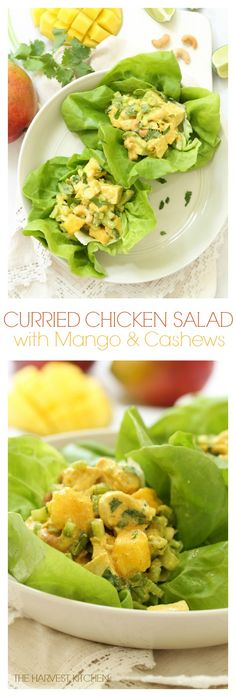 This Lighter Curried Chicken Salad with Mango is loaded with tender bites of chicken, juicy mango, roasted cashews and a light and creamy curried spiced dressing. @theharvestkitchen.com