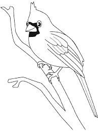 Coloring Pages Cardinal Bird