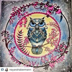 Jardim Secret @livrojardimsecreto Instagram profile - Pikore