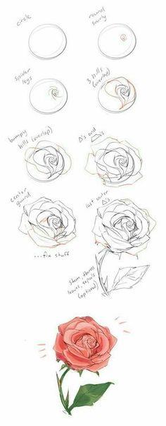 Rose - Flor