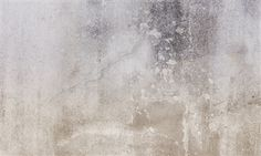 This warm concrete wall covering also looks nice.