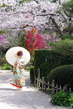 Bridal photo shooting at Shukkeien, a Japanese-style garden in Hiroshima  縮景園