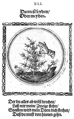 Joachim Camerarius d. J.: Vierhundert Wahl-Sprüche und Sinnen-Bilder, Mainz 1671