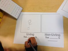 Completely Kindergarten: Living and Non-Living Unit: Class Book FREEBIE