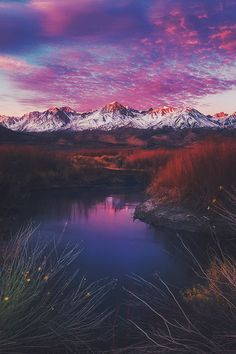 Pars Kutay - Google+ Morning Brush - Owens River, Owens Valley, Eastern Sierra, #California by Ted Gore