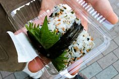 Onigiri Recipe - Chocolate & Zucchini