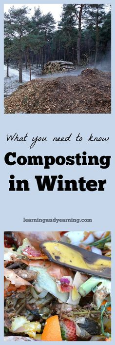 Have you wondered if you should be composting in winter? Here's what you need to know to successfully compost year round.