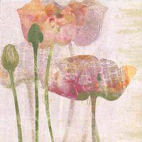 Carol Nunan - A Printmaker: GALLERY