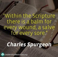 """Within the Scripture there is a balm for every wound, a salve for every sore."" ― Charles H. Spurgeon"