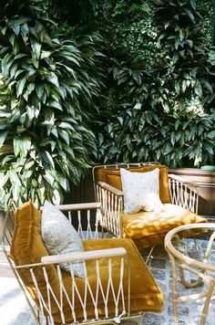 Bohemian patio decor ideas. These can chairs, those mustard cushions. To die.