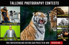 At #Tallenge, we provide an opportunity for talented people from around the world to showcase their photography skills and become famous. We have opened 6 new #Photography #Contests on Tallenge for all the gifted photographers to participate and win fame, recognition and Exciting #CashPrizes. Check out these new contests by clicking here, http://www.tallenge.com/contestcalendar