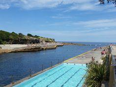 Clovelly, Bondi to Coogee walk, Sydney, New South Wales, Australië