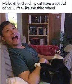 Animal Memes, Funny Animals, Cute Animals, Animal Humor, Our National Bird, Cat Memes, Funny Memes, Secret Song, Go To Sleep
