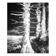 Monoprint Photo And Video, Abstract, Artwork, Instagram, Summary, Work Of Art