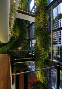 39 Insanely Cool Vertical Gardens Singaporean Office Garden An award-winning interior garden created by Tierra Design / POD for a building in Singapore's Central Business District. Architecture Durable, Green Architecture, Sustainable Architecture, Architecture Design, Classical Architecture, Contemporary Architecture, Biophilic Architecture, Singapore Architecture, Building Architecture
