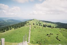 Crêtes du Jura, Switzerland