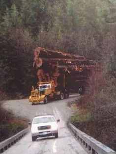 Logging Equipment, Heavy Equipment, Leather Rifle Sling, Forest Pictures, Old Trees, Big Rig Trucks, Transporter, Big Tree, Classic Trucks
