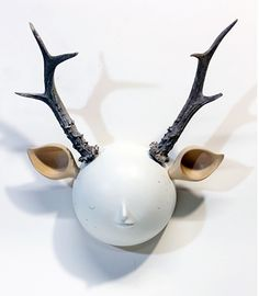 """taxiderme 01 - 2012 - mixed media sculpture with hand carved bass wood and antler 12.5 x 11 x 4.5"""""""