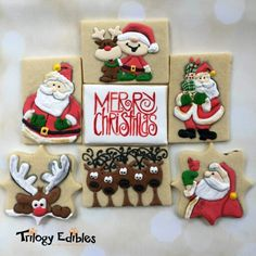 Back at it after a wonderful weekend away so here's another throwback to last year's Christmas cookie class at Registration is open for my two classes now. Santa Cookies, Galletas Cookies, Christmas Sugar Cookies, Iced Cookies, Royal Icing Cookies, Holiday Cookies, Christmas Candy, Cupcake Cookies, Holiday Treats
