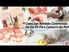 3 Formas Fáceis de Dar Remédio/Medicação Comprimido, Cápsula Ou Pó Ao Se...