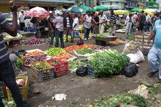 Siguen en aumento productos canasta familiar; Plátanos podrían superar los RD$30 debido a sequía
