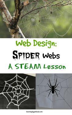 Web Design: Spider Webs