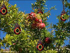 Scare Eye Bird Deterrents - Gardening