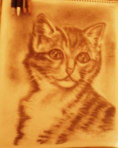 """Título: """"Miau"""". Técnica: Lápiz. Autora: Jeniffer Molina P."""
