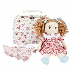 Ragdoll in a Suitcase