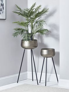 Two Brushed Gold Standing Planters - Indoor Plant Pots & Planters - Decorative Home Accessories - Luxury Homeware Indoor Flower Pots, Indoor Plant Pots, Indoor Planters, Potted Plants, Indoor Plant Shelves, Indoor Outdoor, Rustic Planters, Metal Planters, Striped Cushions