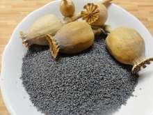 """Jak vyrobit domácí rostlinný nápoj   recept na mandlové, makové, kokosové a rýžové """"mléko"""" Cantaloupe, Garlic, Stuffed Mushrooms, Fruit, Vegetables, Food, Stuff Mushrooms, Veggie Food, Vegetable Recipes"""