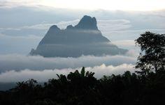 Pico da Neblina - O ponto mais alto no Brasil .. #Amazon #Nature #Brazil