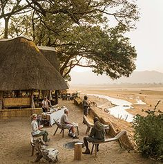 The top properties get guests up close to wildlife—andprovide a pampering experience between safari jaunts. Read on.