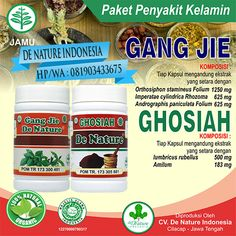 [licensed for non-commercial use only] / Nama Obat Gonore Herbalism, Jar, Commercial, Twitter, Jars, Herbal Medicine, Drinkware, Vase