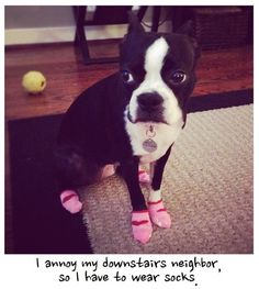 I annoy my downstairs neighbour, so I have to wear socks.