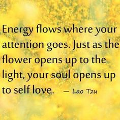 Where your energy goes