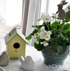 Nice Home - inspiracje