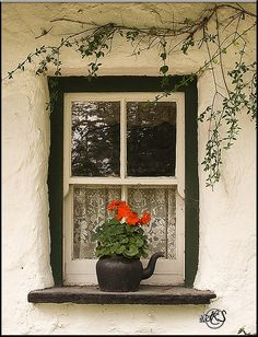 Cottage Window by Lisa Schofield via Flickr.com
