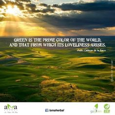 Nature has given us the prime #color! follow today's #quoteoftheday.#livegreen #ecofriendly  https://www.facebook.com/amaherbal/photos/a.283777945111081.1073741829.274434279378781/503565999798940/?type=1&theater…