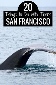 20 Fun Things to Do with Teens in San Francisco | San Francisco with Kids | San Francisco Attractions