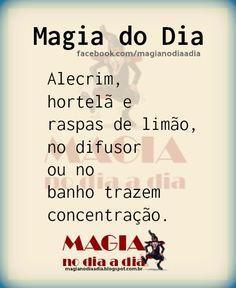 Magia no Dia a Dia: Magia do Dia: concentração