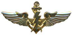 Special Operacions Force qualification badge