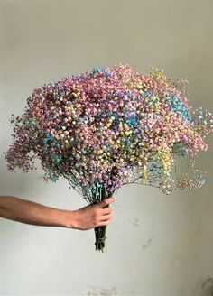 The hottest trend of dried flowers, delivered directly to your door