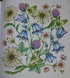 Instagram media mami__0724 - 今日は嫌な事あったけど、塗り絵塗ったらスッキリした #大人の塗り絵 #コロリアージュ #花が一体何の花なのか分からない #まぁそんな事気にせず塗りますが #でも毎回気になる #花の知識は皆無 #次何塗ろっかな~
