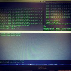 #nginx #deploy #linux #sysadmin #devops #https #work #cyberpunk #cyber #terminal by _realmenteimporta