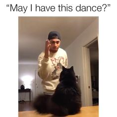 This is Sooooo Sweet – JacquiandScott - Humor Funny Animal Memes, Funny Animal Videos, Cute Funny Animals, Cute Baby Animals, Cat Memes, Funny Cute, Animals And Pets, Cute Cats, I Love Cats