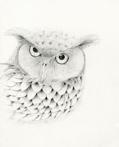Mr Owl Original Drawing Fine Art 11x14 Black by ABitofWhimsyArt,